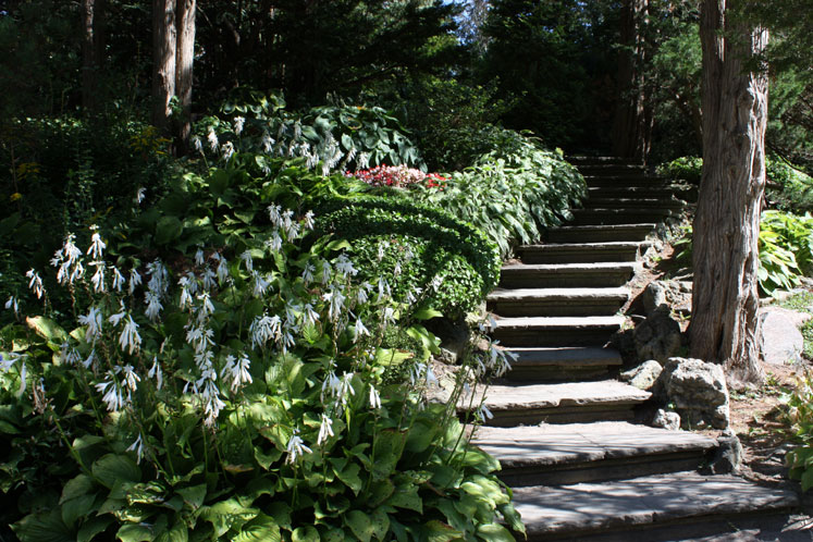 Stairs in Edwards Gardens 12628